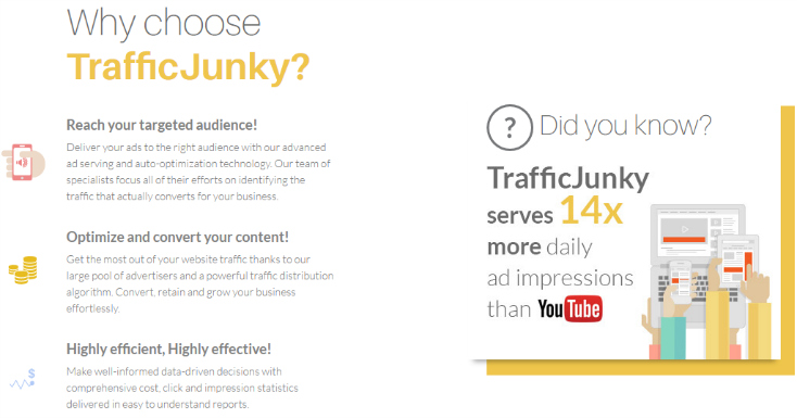 Traffic Junky review screenshot