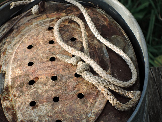 Bait bucket image