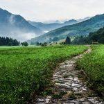 Affiliate Marketing Success [3 Paths]